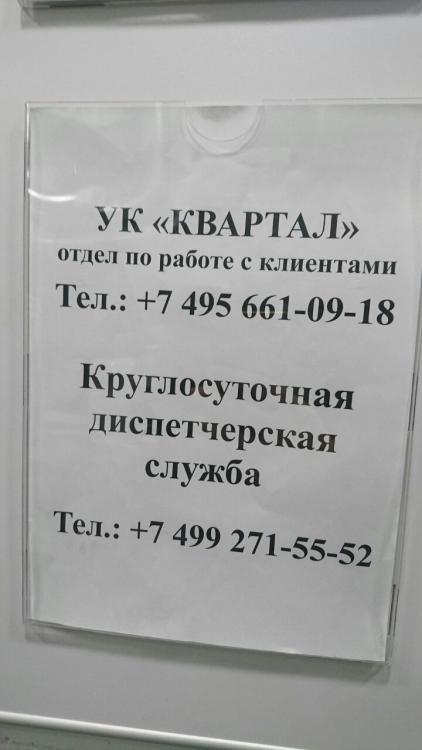 226610901_115269.jpg